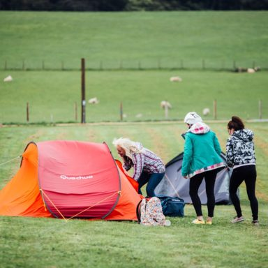 Camping   girls at tent, sheep background