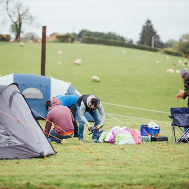 Camping   ppl pitching tents sheep background