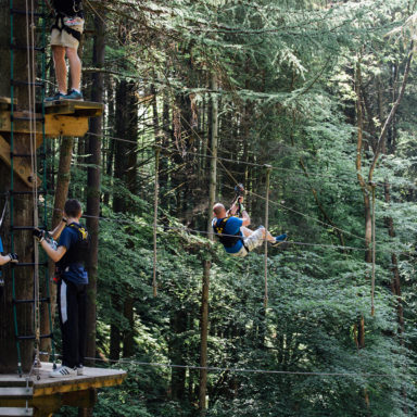Tree Top Zip Line