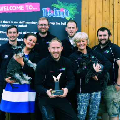 Jungle NI Tourism Awards 2016