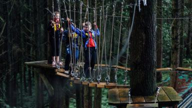 Kids Tree Top - Broken Bridge