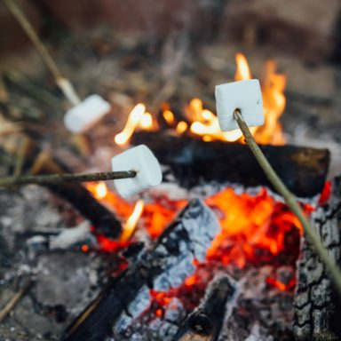 Forest School   marshmallows over fire