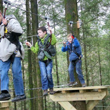 Kids on the Treetop