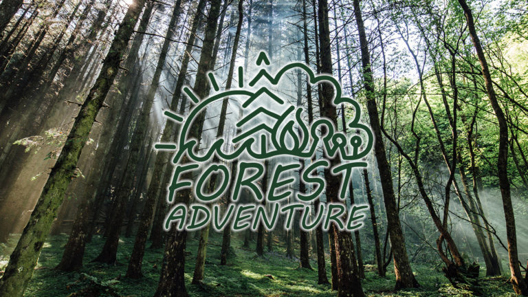 Forest School Adventure Banner new Website