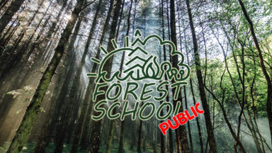 Public Forest School Website Banner