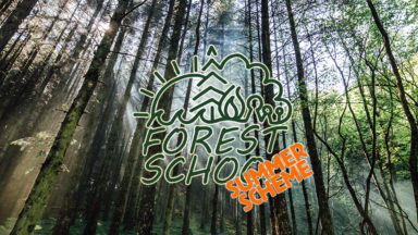 Summer Scheme Forest School Website Banner