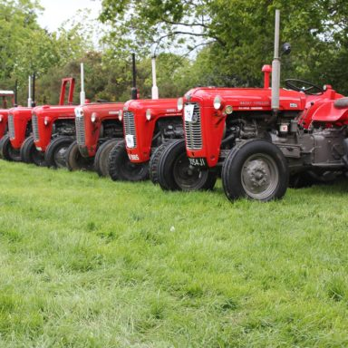Mid Ulster Vintage rally red tractors lined up