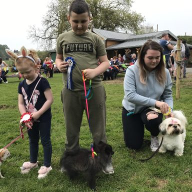 Toy Dog   1st, 2nd & 3rd